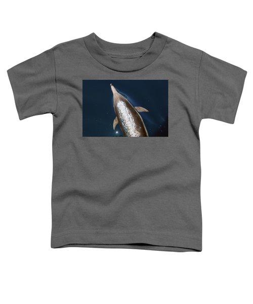 talking Back Toddler T-Shirt