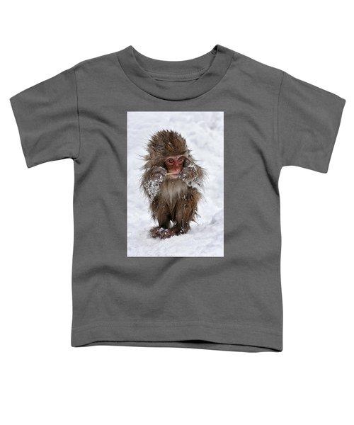 Tasty? Toddler T-Shirt