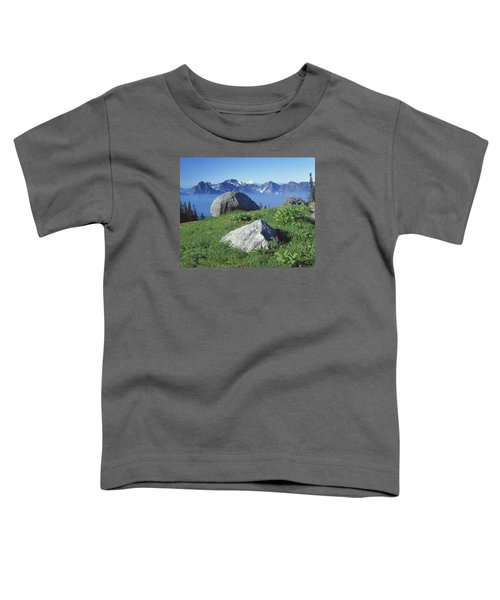 1m4862-tatoosh Range And Mt. St. Helens  Toddler T-Shirt