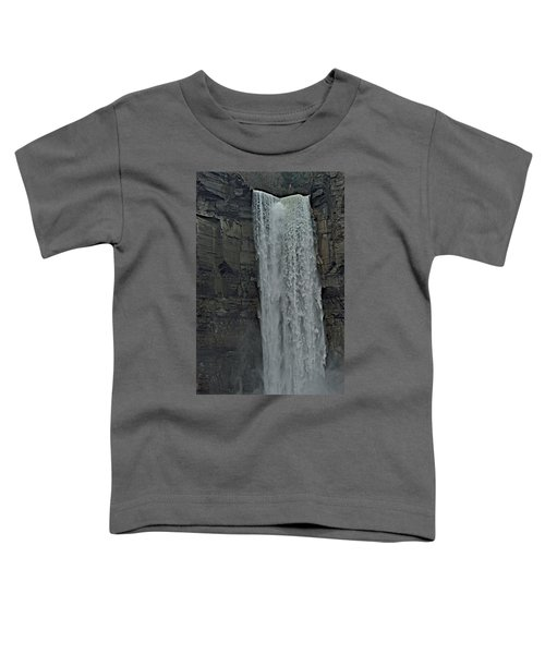Taughannock Falls State Park Toddler T-Shirt