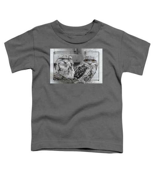 Tawney Frogmouths Toddler T-Shirt
