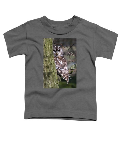 Tawny Owl In A Woodland Toddler T-Shirt