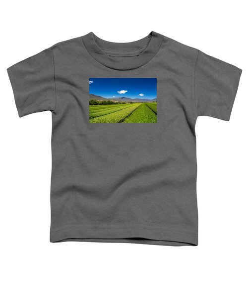 Tea In The Valley Toddler T-Shirt