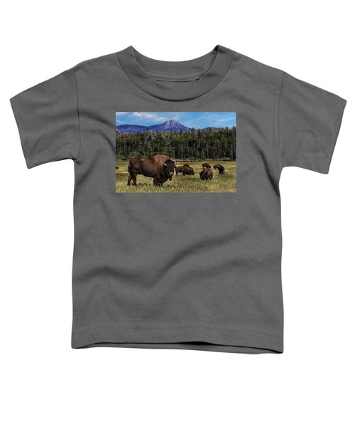 Tending The Herd Toddler T-Shirt