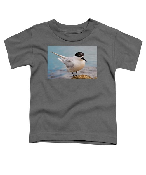 Toddler T-Shirt featuring the photograph Tern 1 by Werner Padarin