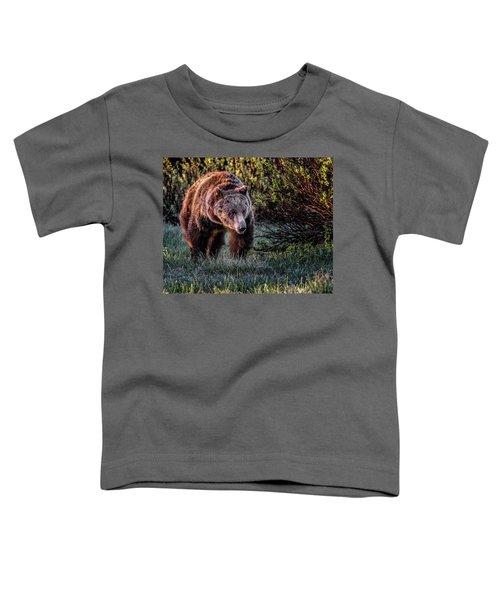 Teton Grizzly Toddler T-Shirt
