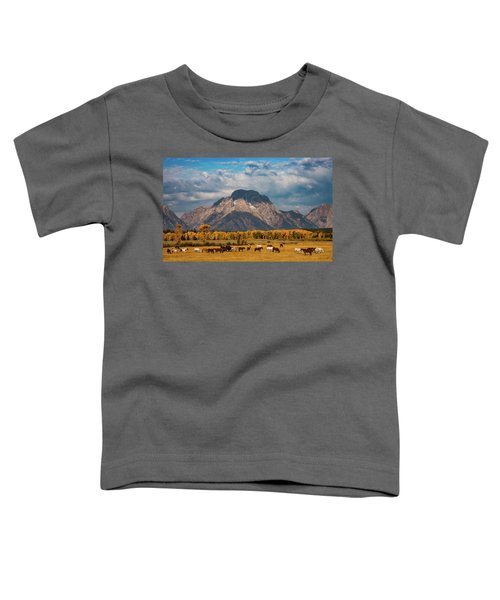 Teton Horse Ranch Toddler T-Shirt