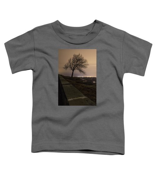 Thacher Park Twilight Toddler T-Shirt