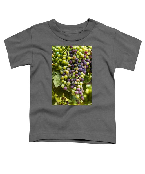 The Art Of Wine Grapes Toddler T-Shirt