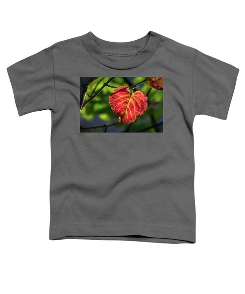 Toddler T-Shirt featuring the photograph The Autumn Heart by Bill Pevlor