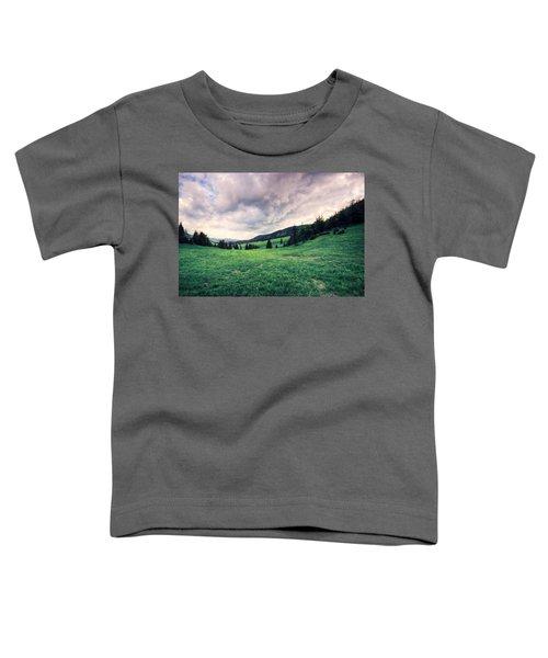 The Basin Toddler T-Shirt