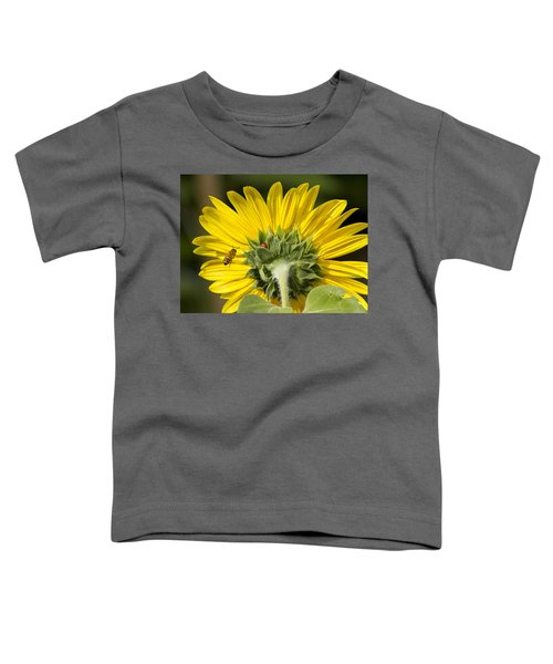 The Bee Lady Bug And Sunflower Toddler T-Shirt