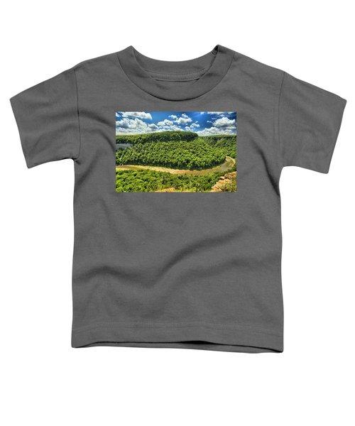 The Big Bend Toddler T-Shirt
