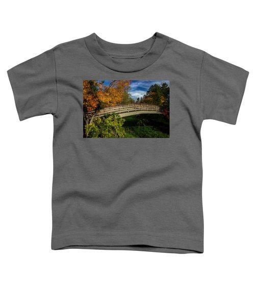 The Bridge To The Garden Toddler T-Shirt