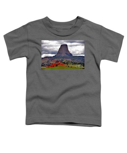 The Devils Tower Wy Toddler T-Shirt
