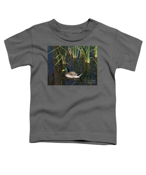 The Duck On The Pond At Papago Park Toddler T-Shirt