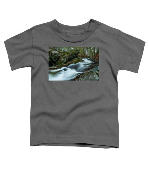 The Falls At Tierney Toddler T-Shirt