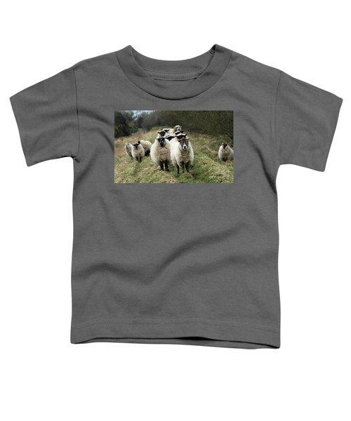 The Flock 2 Toddler T-Shirt
