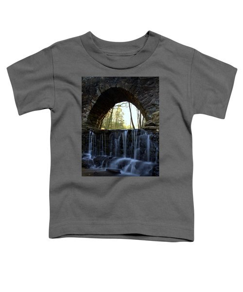 The Gateway Toddler T-Shirt