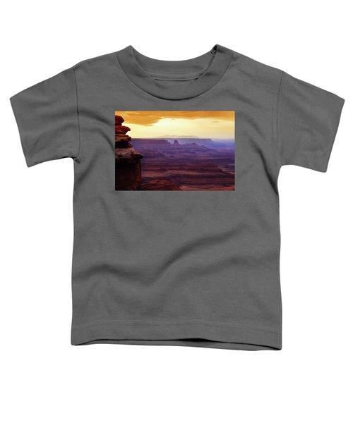 The Gold Light Of Dawn Toddler T-Shirt