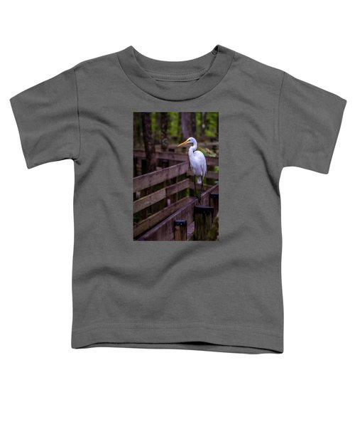 The Great Egret Toddler T-Shirt