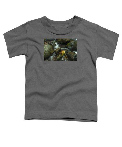 The Leaf Toddler T-Shirt