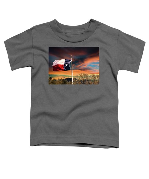 The Lone Star Flag Toddler T-Shirt