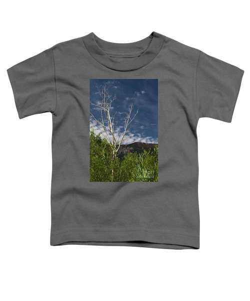 The Lonely Aspen  Toddler T-Shirt