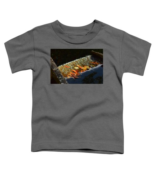 The Mabry Mill Sluice Toddler T-Shirt