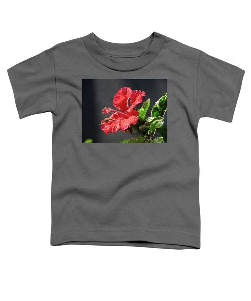 The Mallow Hibiscus Toddler T-Shirt