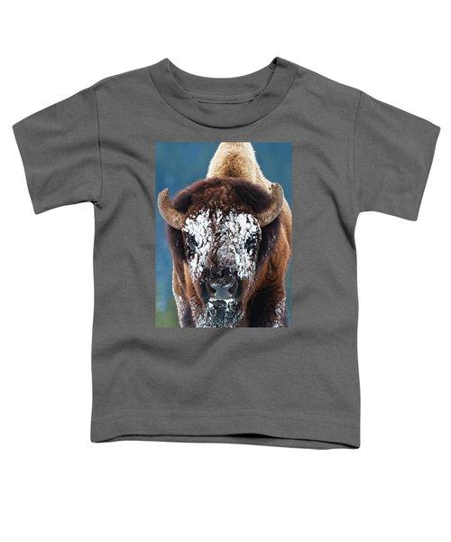 The Masked Bison Toddler T-Shirt