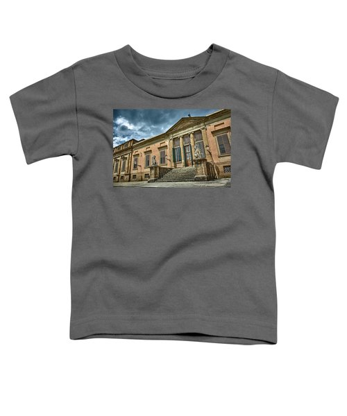 The Meridian Palace In The Pitti Palace Toddler T-Shirt
