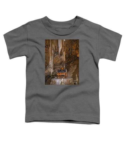 The Music Of The Ages Toddler T-Shirt