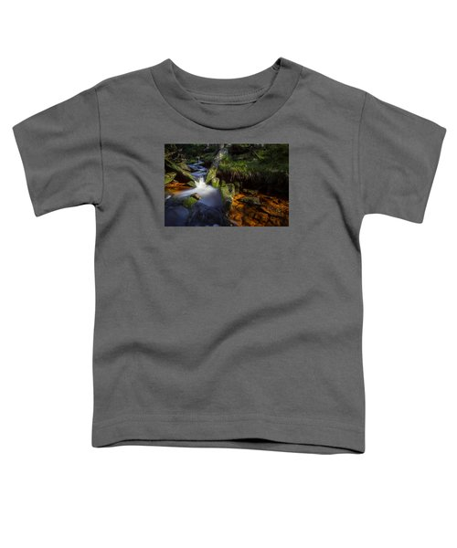 the Oder in the Harz National Park Toddler T-Shirt