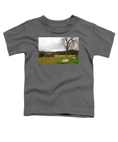 The Old Barn With Tree Toddler T-Shirt