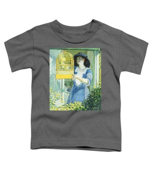 The Open Window Toddler T-Shirt