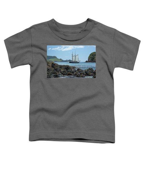 The R Tucker Thompson Toddler T-Shirt