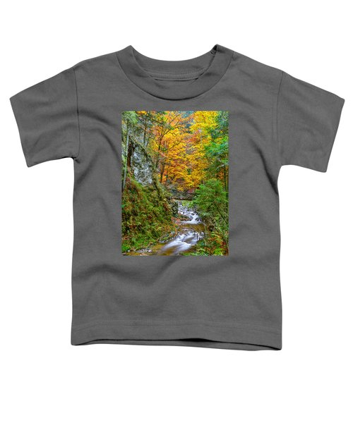 Cascades And Waterfalls Toddler T-Shirt