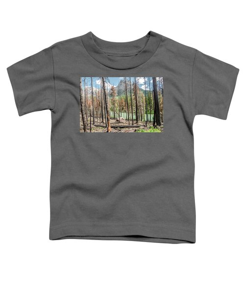 The Revealed View Toddler T-Shirt