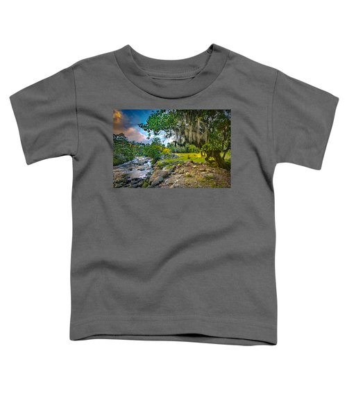 The River At Cocora Toddler T-Shirt