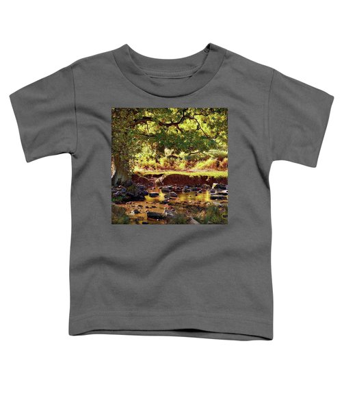 The River Lin , Bradgate Park Toddler T-Shirt