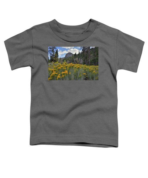 The Road To Mt. Charleston Natural Area Toddler T-Shirt