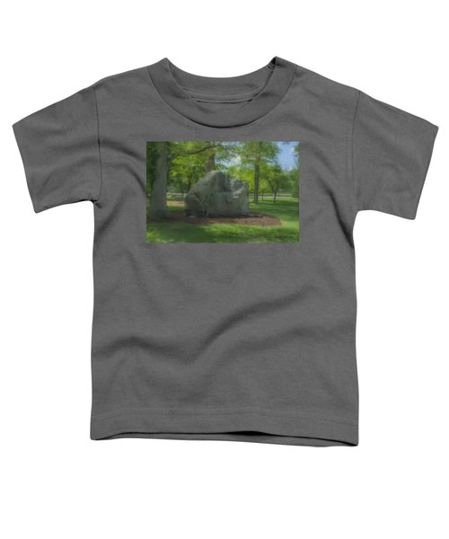 The Rock At Frothingham Park, Easton, Ma Toddler T-Shirt