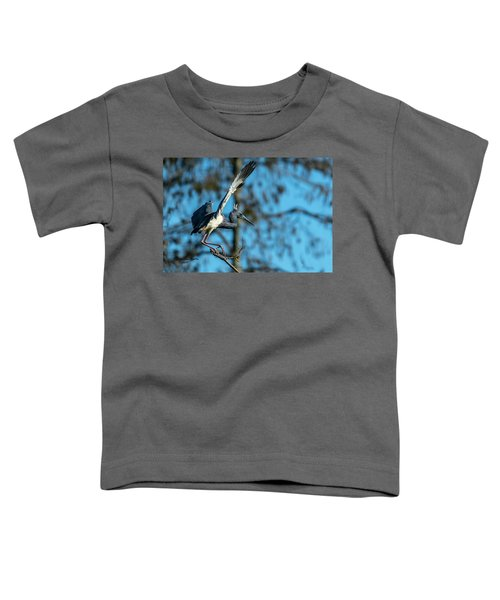 The Stage Entry Toddler T-Shirt