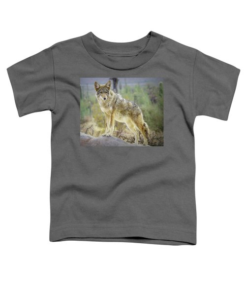 The Stance Toddler T-Shirt