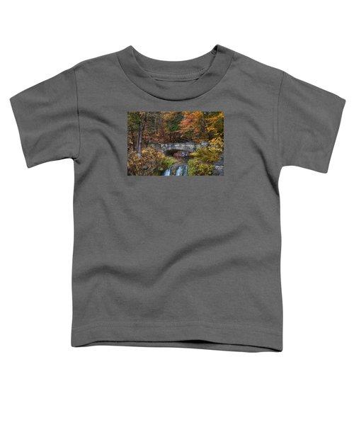 The Stone Bridge Toddler T-Shirt