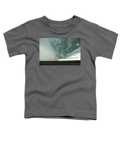 The Stoneham Shelf Toddler T-Shirt