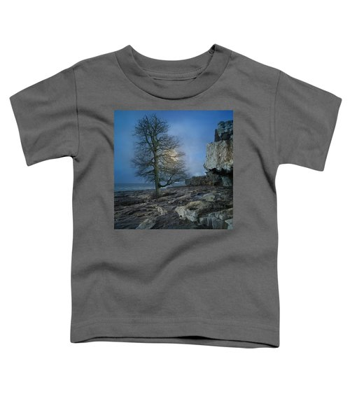 The Tree Of Inis Mor Toddler T-Shirt