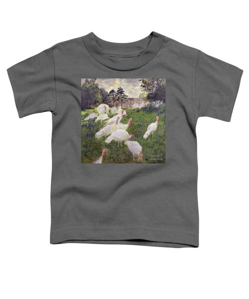 The Turkeys At The Chateau De Rottembourg Toddler T-Shirt