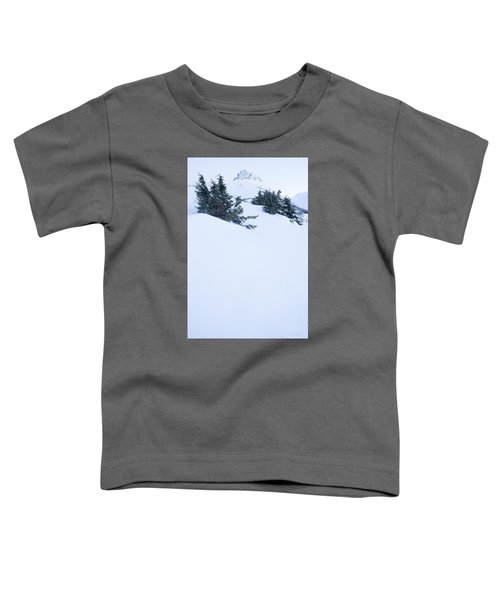 The Wedge In Winter Toddler T-Shirt